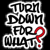 Turn Down 4 Nuthin'