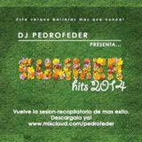 DJ Pedrofeder - SummerHits 2014 [Comercial]