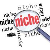 30- How to Dominate Niche Music Markets