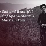 dj bluetonic presents A Travel With Sparklehorse