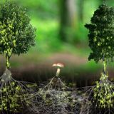 Écrits de nature - Alexis Gloaguen, Patrick Laupin, Yvon Le Men et Paul Brancion