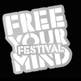 Seth Troxler b2b The Martinez Brothers - Live @ Free Your Mind Festival,Holland - 04.JUN.2016