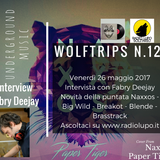 WolfTrips #12 - 26 maggio 2017 -INTERVIEW FABRY DJ-NEWS Naxxos Big Mama Breakbot Blende e Brasstrack