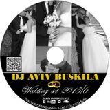 Wedding Set 2015/6 DJ Aviv Buskila