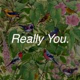 Really You, Ep 17 - 30 May 2016