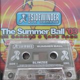 Slimzee, Riko, Major Ace, Dogzilla - Sidewinder Summer Ball - 2003
