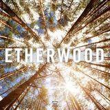 Etherwood mix