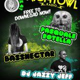 Night Owl Radio 041 ft. Bassnectar and DJ Jazzy Jeff