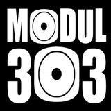 MODUL303 - A better Living with E 001 - FZK Wolf