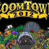 The Parliamentalist LIVE at Boomtown 2012