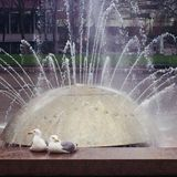 April 4-18, 2017 Seattle Center International Fountain Mix