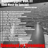 Bootlegger vol.11(DnB Mash Up Special)