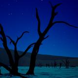 The Night Calls - Episode #92