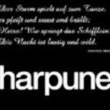 "Hardfloor LIVE at ""2 Jahre Harpune"" @ Harpune (Dusseldorf - Germany) - 12 June 2004"