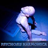 Psychosis Harmonica