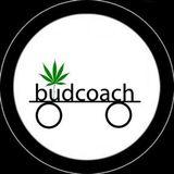 The budcoach Show EP 50 - Eric Herrmann,  Cannabis Artist - Eric Herrmann Studios Pt. 1