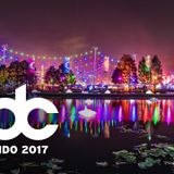 Alan Walker - Live @ EDC Orlando 2017 (Florida) - 11.11.2017