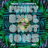 Funky Explorations #21 (Mol)