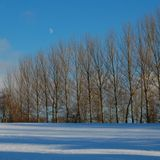 Winter Solstice Mix (2010)
