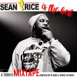SEAN PRICE IS THE BEST_Compiled by DJ Rogo & Tonico Settanta