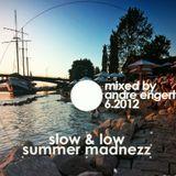 DJ Andre Engert - Summer Madnezz..