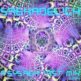 PsySrek Mix - Srekadelic (Maninkari Crew ~ 2004)