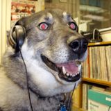 WHRW 90.5FM Guest Mix by Schrödinger the Cat