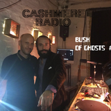 Bush of Ghosts #17 With David Tinning and Matty Martinez 06.10.172017