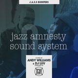 JAZZ AMNESTY SOUND SYSTEM - #04 (Bumpers)