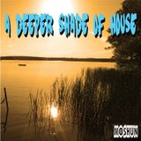 Moshun - A deeper shade of house