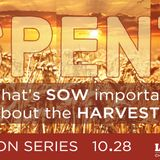 SPENT: Episode 2. What's SOW Important About the Harvest? Proverbs 3:9-10; Isaiah 61:1-7