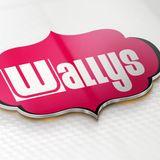 Wallys November 2016 Deep & Funky House Selection