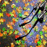 "broflow's dnb sessions vol. 4  ""colorful autumn"""
