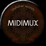 Progressive_Psytrance_Mix_Midimux_ June_2014.mp3