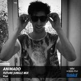 Batiskaf140 - Animado - Future Jungle mix at KISS.FM
