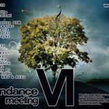Mianviru - Tendance Meeting VI