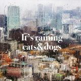 It's raining cats&dogs