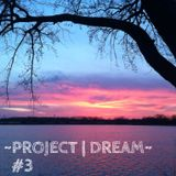 Project Dream #3