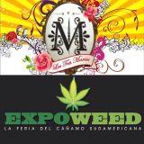 Las Tres Marías - Marihuana, Ley 20 mil y ExpoWeed