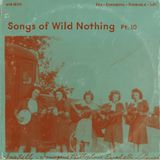 dfbm #101 - Songs of Wild Nothing Pt. 10