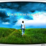 Voices from Heaven volume 6