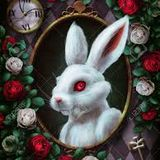 Follow the White Rabbit...