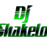 2014 Best Rap & Hip Hop Mixed by DJ Shakelo