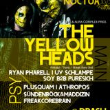 The YellowHeads @ Noctua (Freiburg) 06.01.2017 [Part.2]