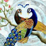 Aslandj - Wish Bird Podcast 1 23.12.2016