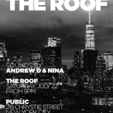 Andrew Devlin & Nina @ Pubic Roof July 22nd 2017