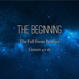 04) The Beginning, The Fall From Brother