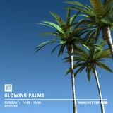 Glowing Palms (NTS Manchester) - 3rd April 2016