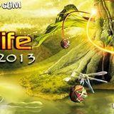 B.e.n. - Tree of Life Festival 2013 / Special 5h Singularity set - Part 3 / Celestial State