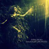 Atilla Altacı - Source of Life #005